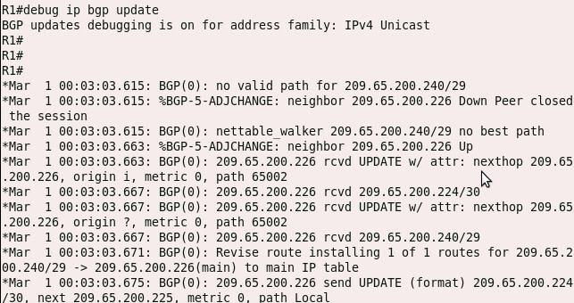 debug ip bgp update command