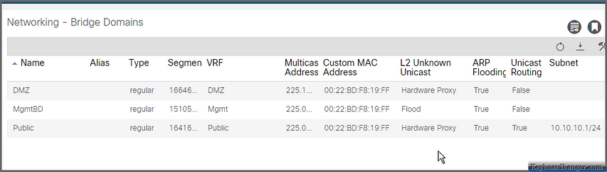 list of configured ACI bridge domains