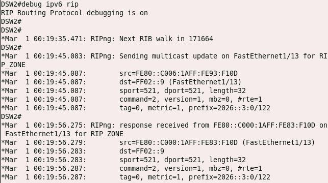 debugging in ripng