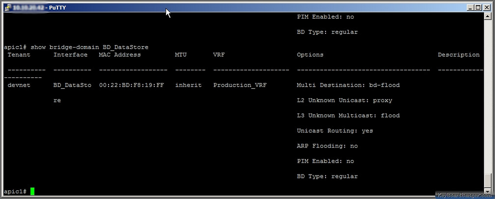 displaying a particular ACI bridge domain in CLI