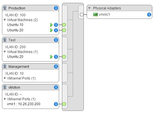 port groups vmnic management network