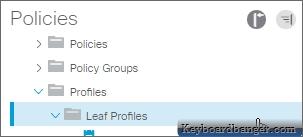 clicking on Leaf Profiles menu in ACI