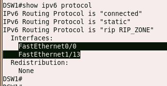show ipv6 protocol