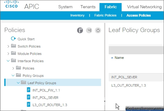 displaying leaf interface policy groups