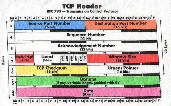 TCP-header-format
